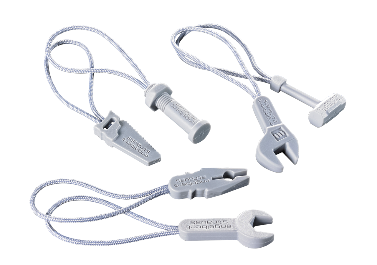 Accessories: Zip puller set e.s.motion 2020 + platinum