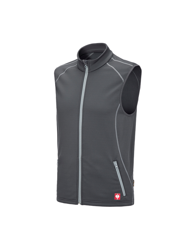 Work Body Warmer: Function bodywarmer thermo stretch e.s.motion 2020 + anthracite/platinum
