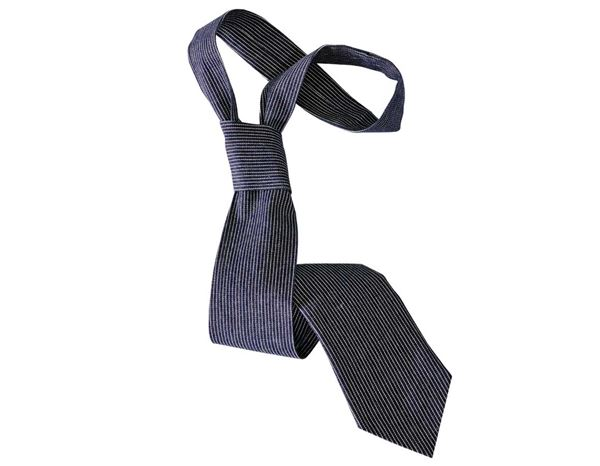 Accessories: Ties stripe e.s.fusion + blue/white