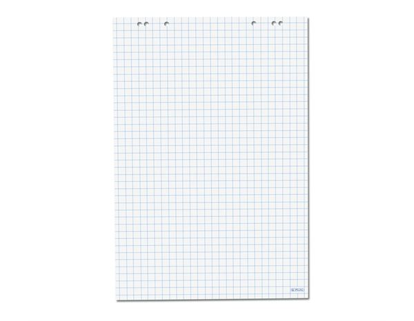 Presentation Supplies: magnetoplan Flipchart pads